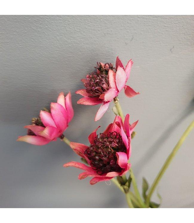 Astrantia - kunst - 5zijtakken met 7 bloemen - 58 cm