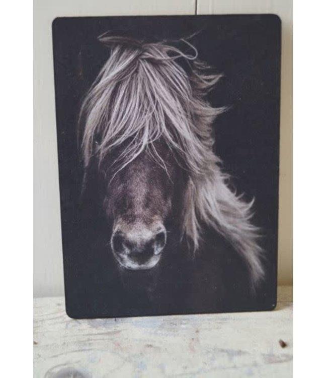 # E849 - Afbeelding paard manen - 14 x 19 cm