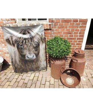 # B445 - Tuinposter - hooglander jong - stevig weerbestendig dubbelzijdig pvc gecoat doek - 82 x 112 cm