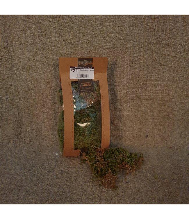 # Moss flat 50gr - Natural - mos gedroogd