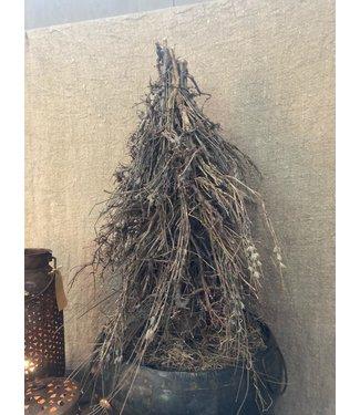Tree Blato D25.0h65.0