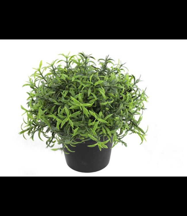 Rosmarinus officinalis groen - kunst - L22B22H18CM