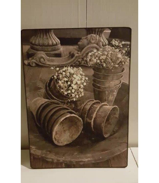 # E749 - Afbeelding kweekpotjes met gipskruid - 14 x 19 cm