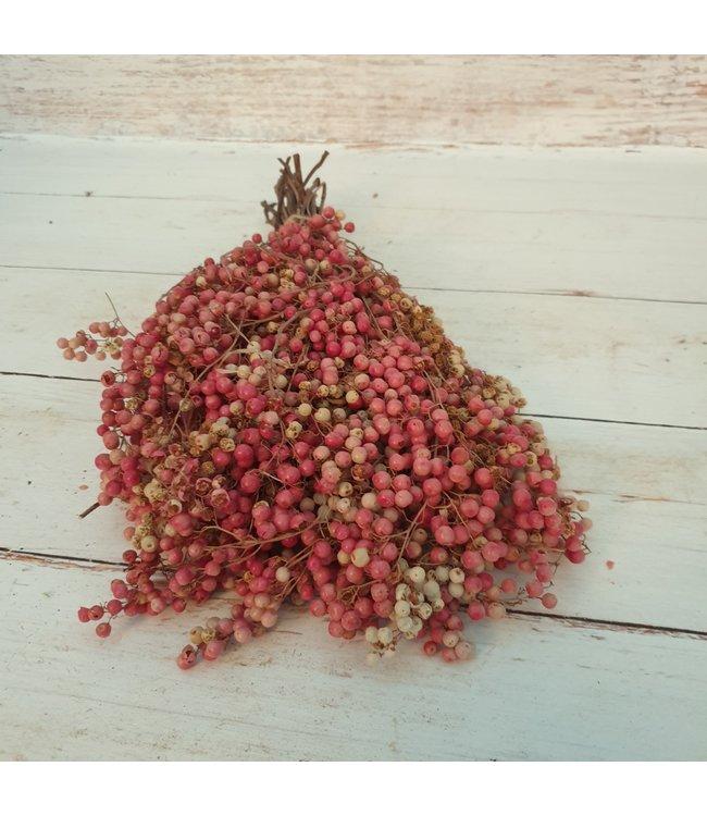 NT!!! - i213 - pepperberries bundle - 30 x 20 x 10 cm