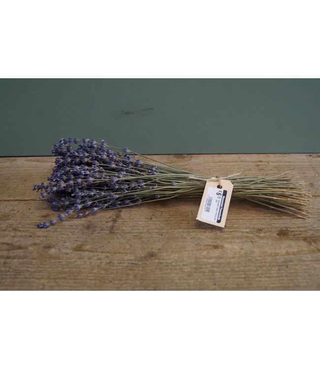 # lavendel blauw droog per bos - 30 x 10 x 8 cm