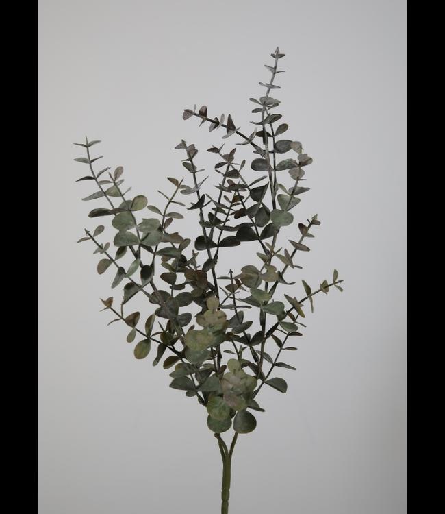 @ Eucalyptus Spray 65cm - kunst