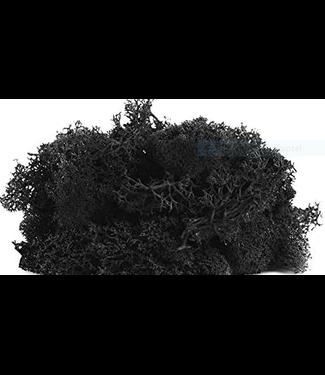 Doosje met 50 gr rendier mos zwart