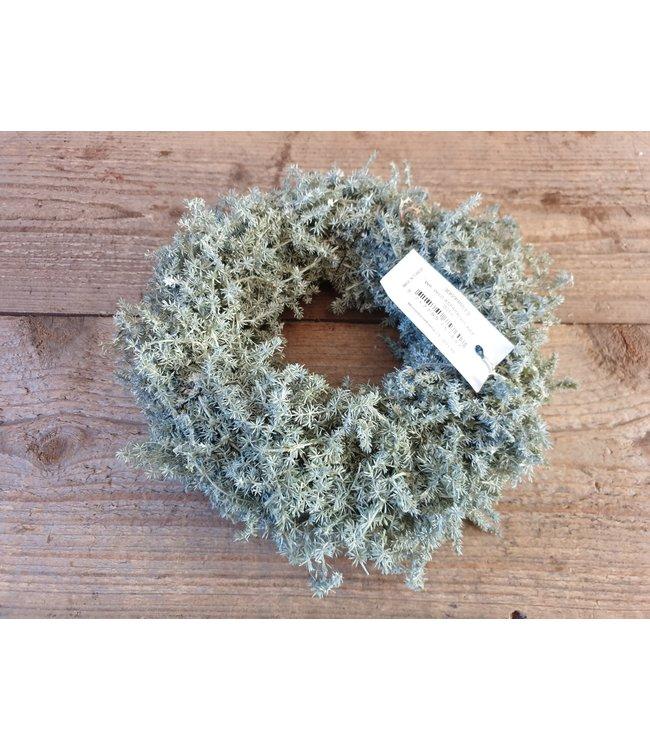 # asparagus wax krans 23 cm x 23 x 9 cm