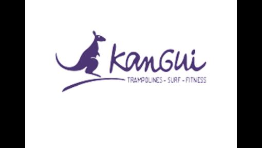 Ressorts de trampoline adaptés aux trampolines Kangui