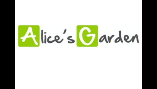 Ressorts de trampoline adaptés aux trampolines Alice's Garden
