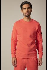 Cavallaro Cavallaro Maricio sweater Koraal