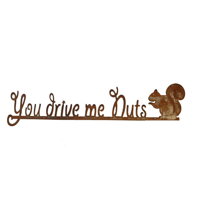 Metalen wandtekstbord you drive me nuts Ecoroest