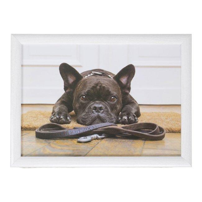 Schootkussen laptray Humor Franse Bulldog