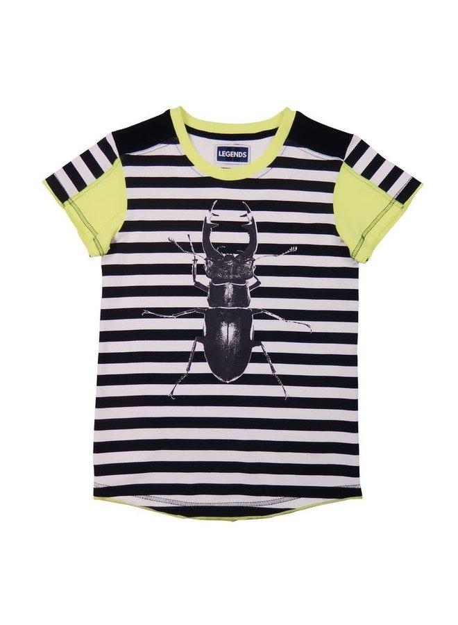 Shirt Beetle