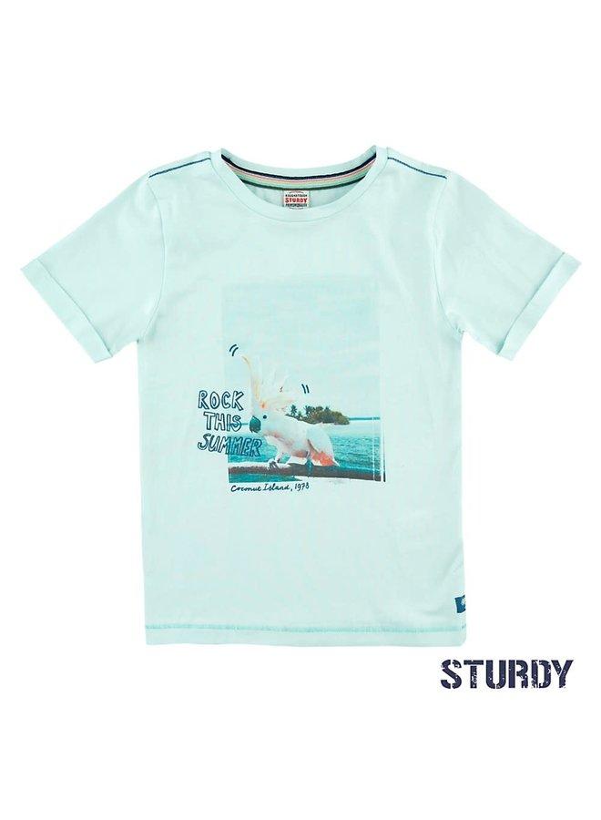 Shirt Rock This Island