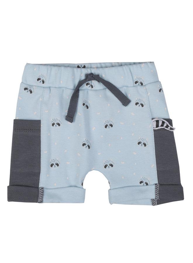 Short Wasbeer