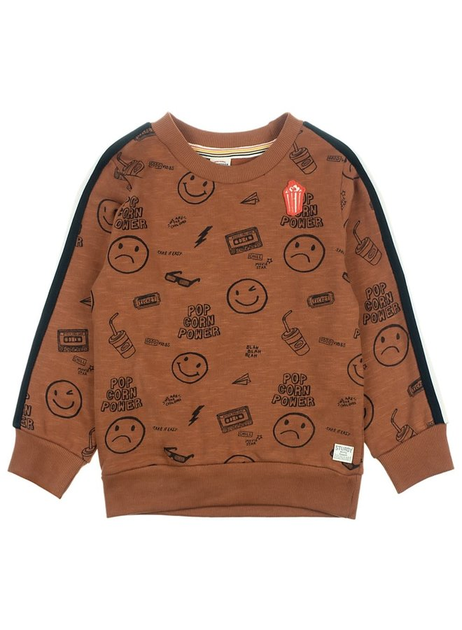 Sweater AOP Bruin - Popcorn Power