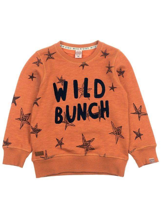 Sweater Wild Bunch Brique - Dino-Mite