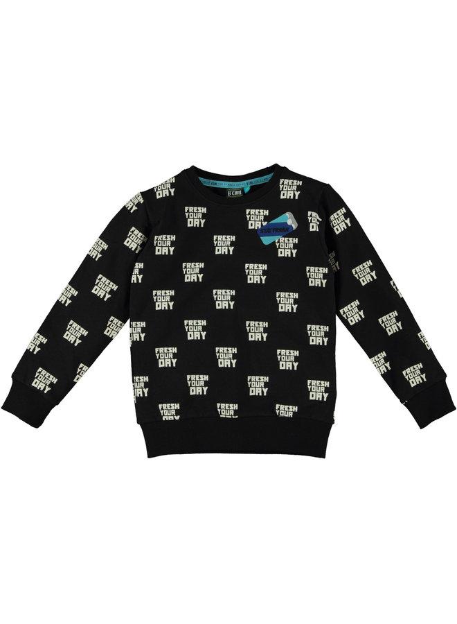 Sweater Zev