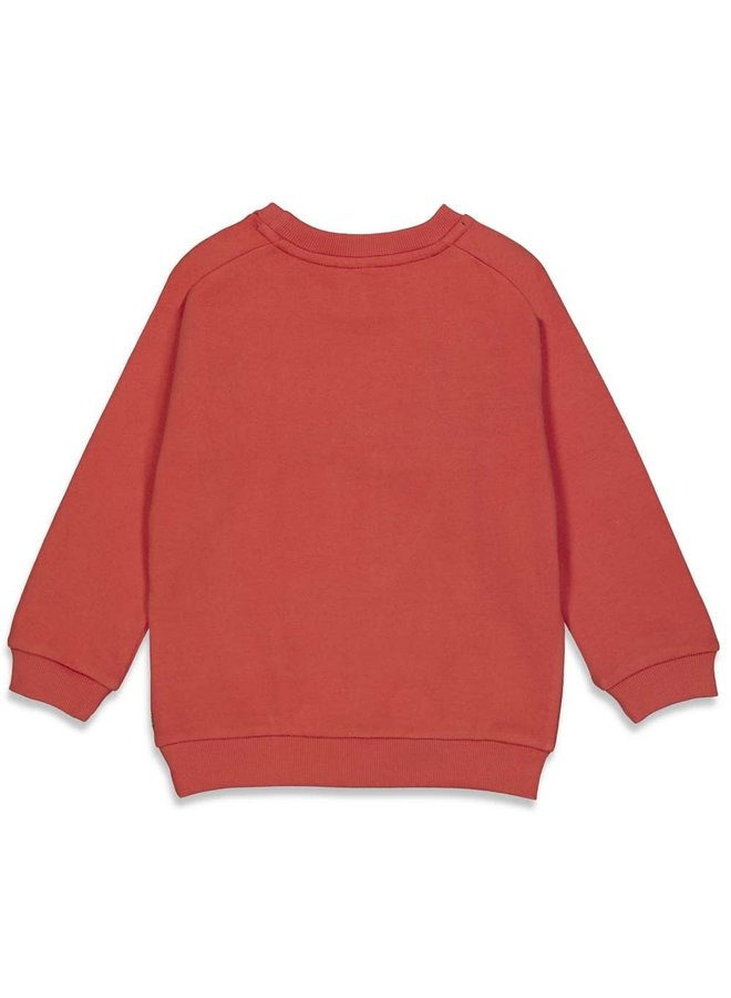 Sturdy - Sweater Thanks Rood - Press And Play