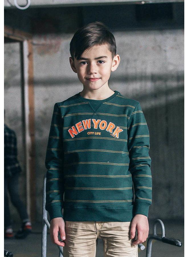 Tygo & Vito -  Sweater YD Stripe NY - Green