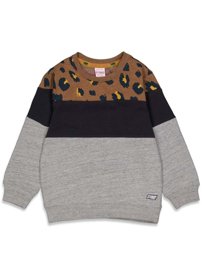 Sturdy - Sweater Bruin - On A Roll