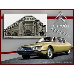Citroën SM jaune wanddecoratie 20x30 cm