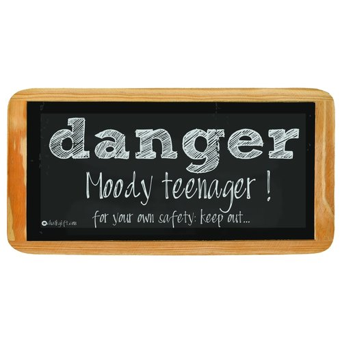 Hanging sign Danger Moody teenager! For your own safety: keep out