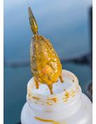 Sonubaits Sonubaits Bait Booster Krill & Squid