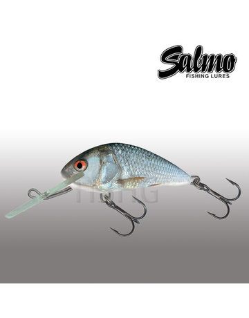 Salmo Salmo Hornet 4cm Floating Real Dace