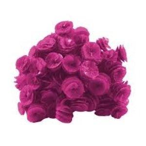 Real Seda Papel para Bala Caracol 40und Pink