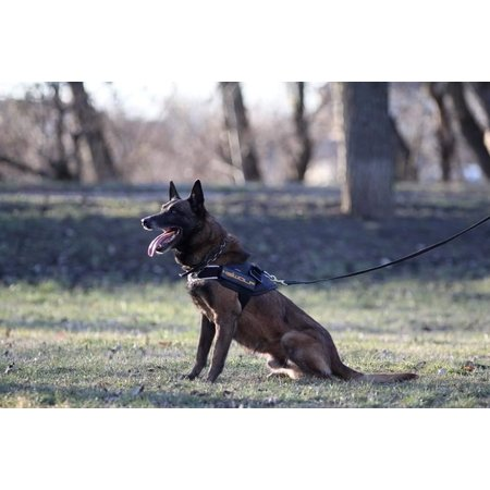 K9-evolution COP Belt Harness