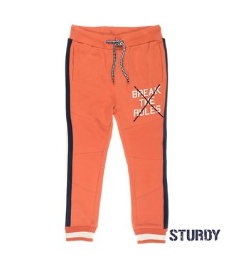 Sturdy Sweatbroek – Treasure Hunter