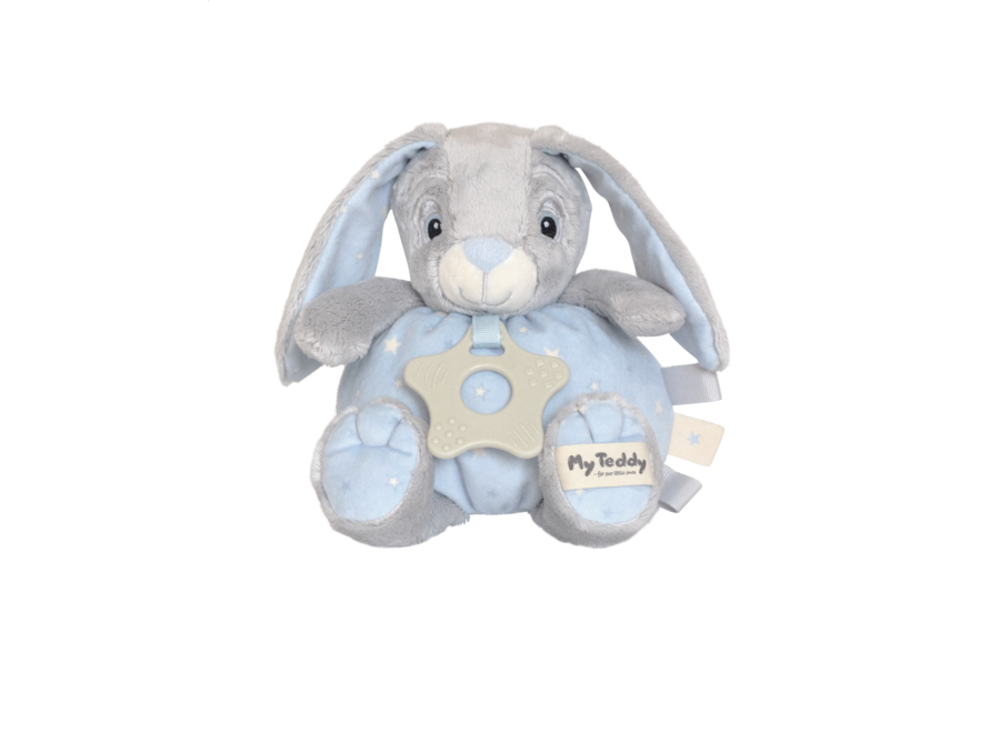 My teddy knuffel haas roze/blauw