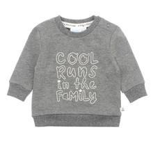 Sweater Cool Antraciet - Dino