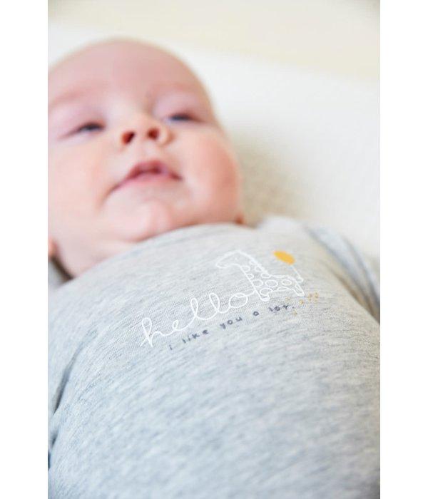 Feetje-baby Longsleeve Hello Sunshine Grijs - Giraffe