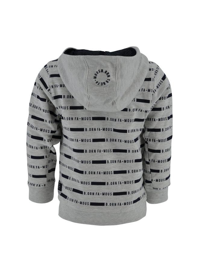 Sweater Matz grijs