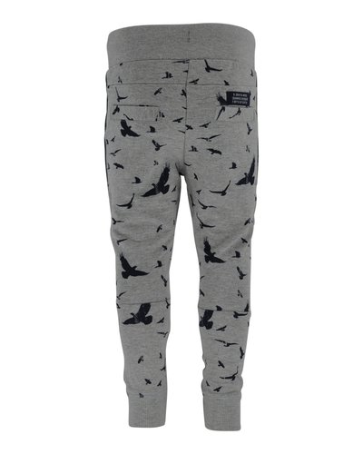 Born to be Famous Broek Tino Grey