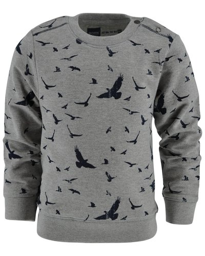 Born to be Famous Sweater Xander grey
