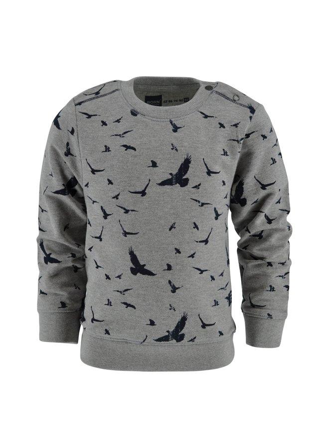 Sweater Xander grey