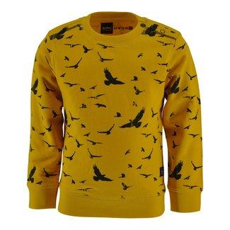 Born to be Famous Sweater Zayn yellow