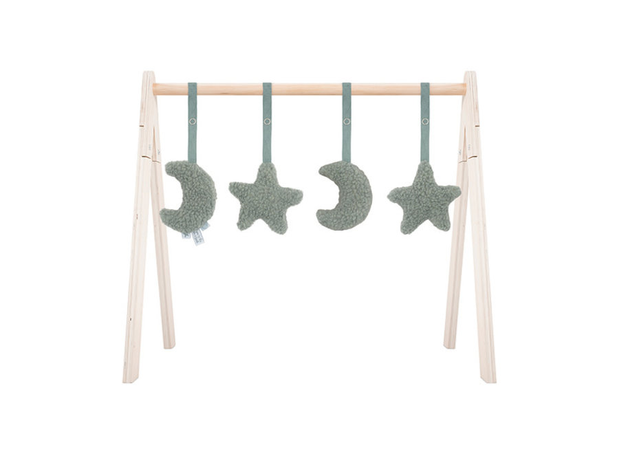 Babygym  Toys Moon 4 stuks 2 kleuren
