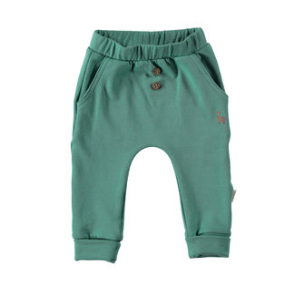 "B.e.s.s Pants green "" organic """
