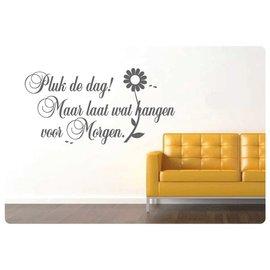 Muurteksten.nl Muurtekst Pluk de dag