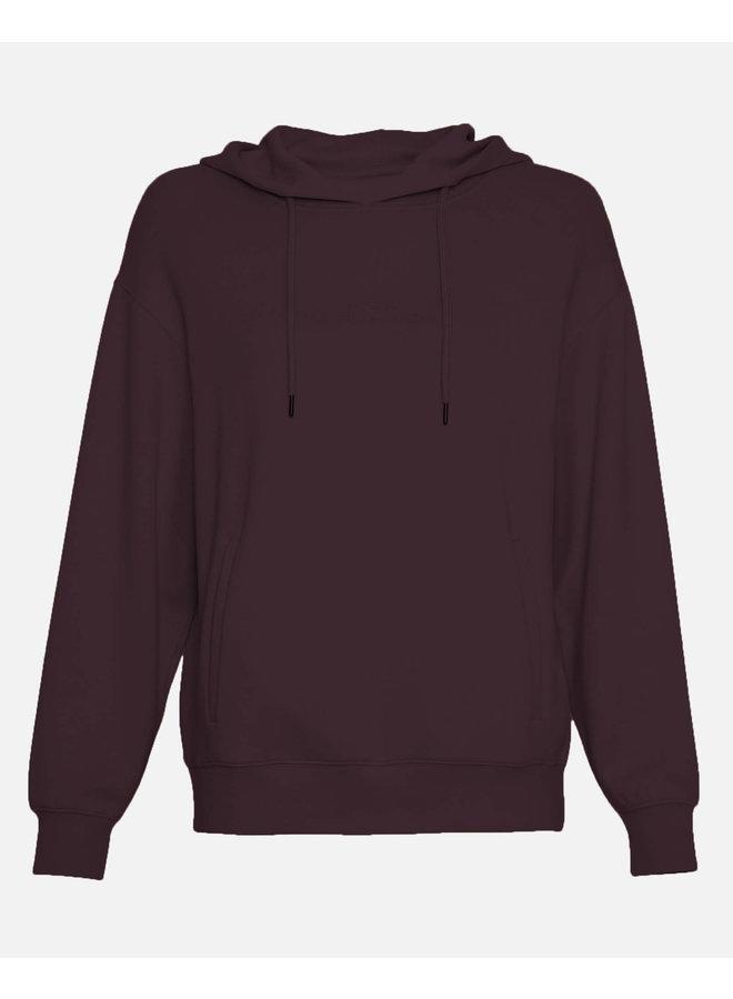 Ima DS Logo Hood Sweatshirt   p royale/p roya