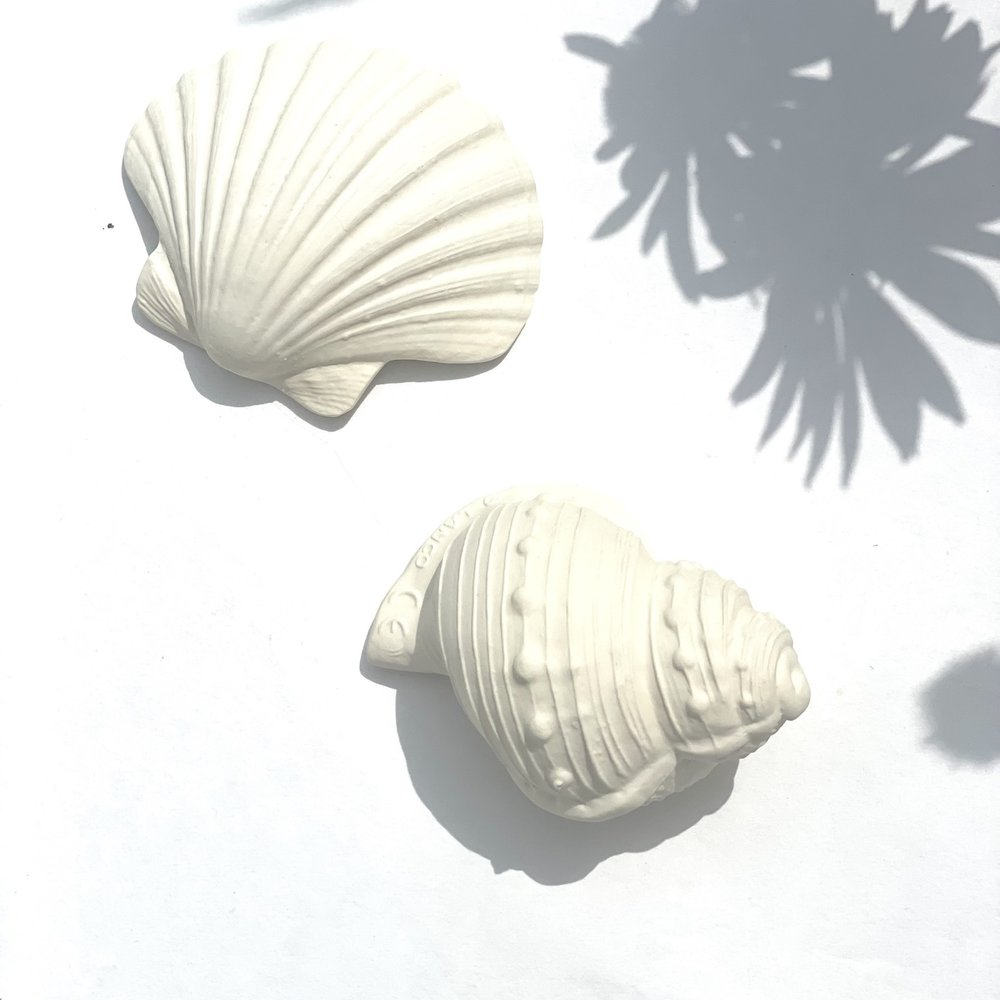 TEETHING TOY - SHELL ROUND
