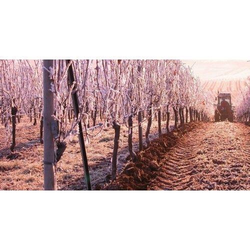 Vignoble des 2 Lunes Pinot Gris Lune 2 Miel 2011, 50cl