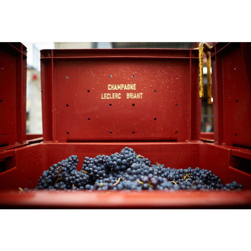 Leclerc Briant Champagne Reserve Brut - Magnum 1,5L