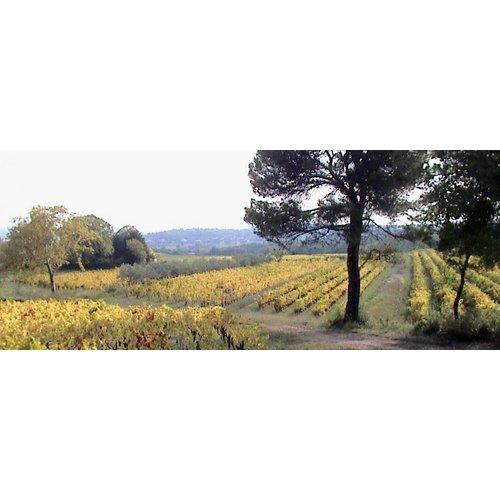 RocheColombe Côte du Rhône Villages 2018