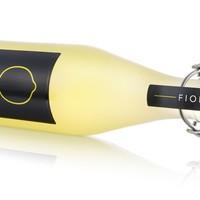 Fiorito, de beste limoncello, bij Organic Bergen